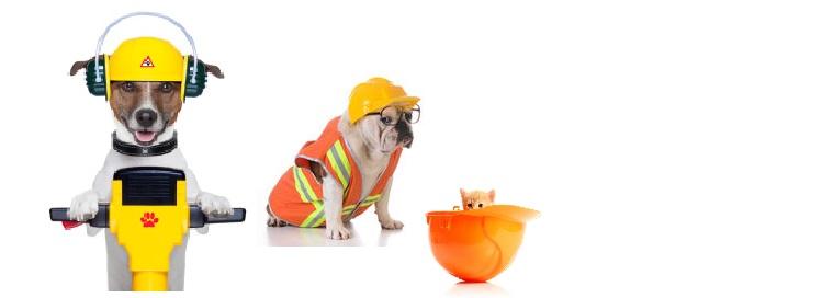 stock-photo-22531979-handyman-dog-worker