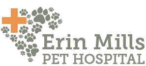 Veterinarians in Mississauga | Erin Mills Pet Hospital